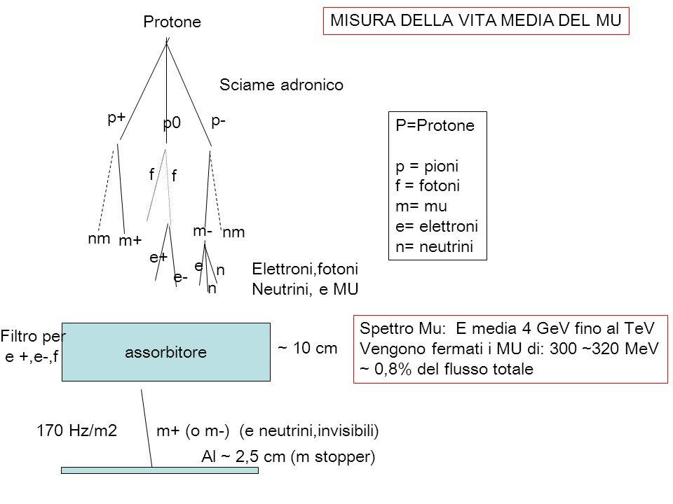 Protone p+ p0. p- f. e+ e- m+ nm. m- e. n. assorbitore. Sciame adronico. Elettroni,fotoni.
