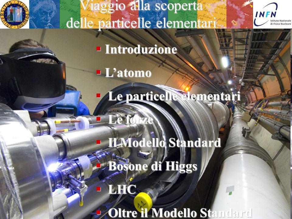 Viaggio alla scoperta delle particelle elementari