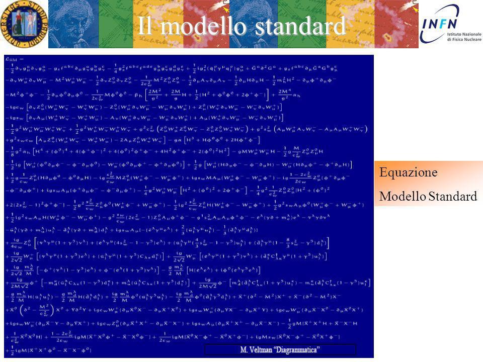 Il modello standard Equazione Modello Standard Treviso 5 Febbraio 2013