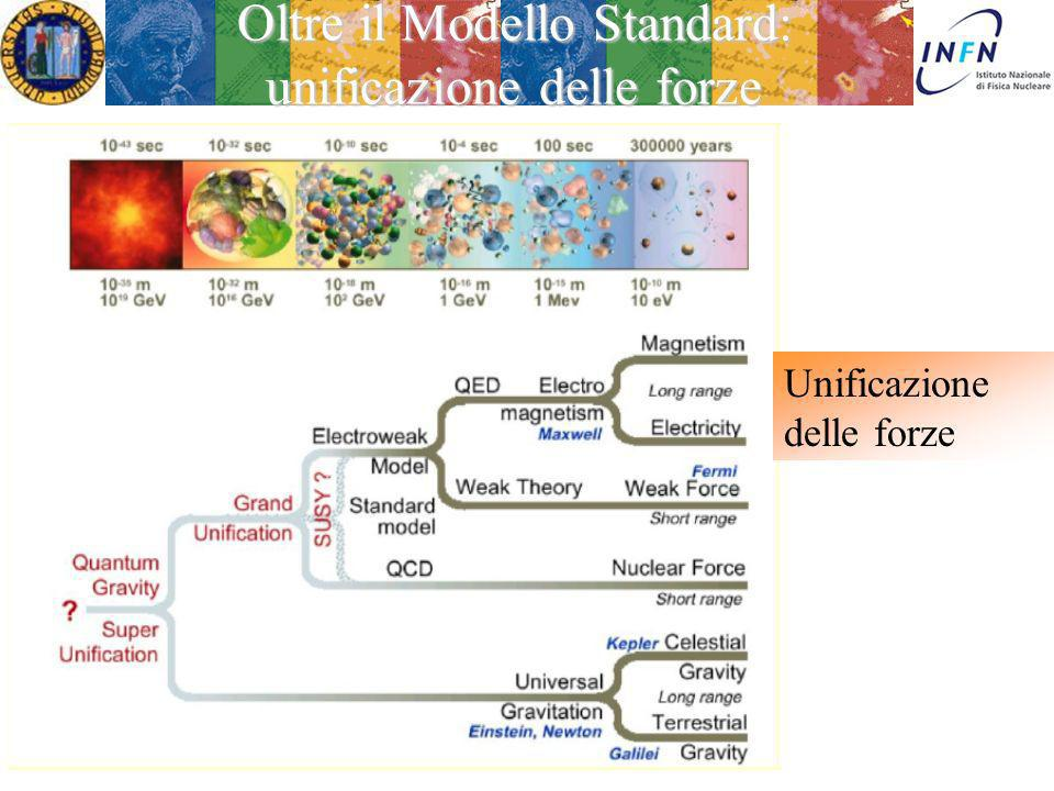 Oltre il Modello Standard: unificazione delle forze