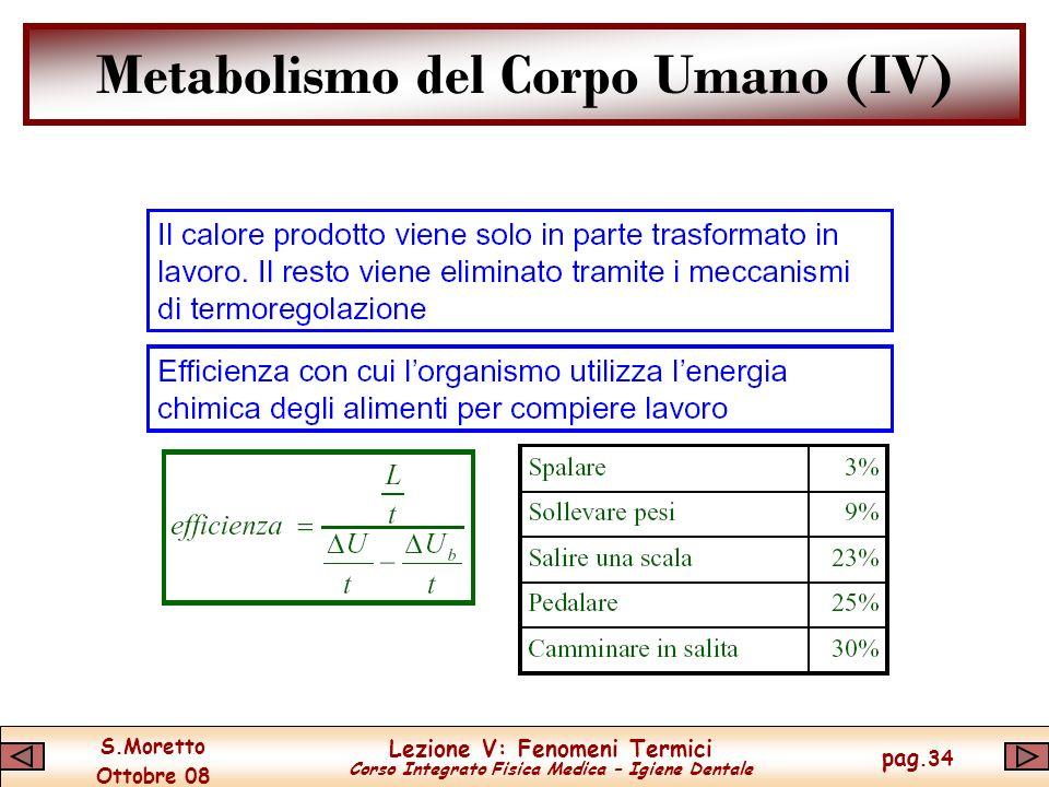 Metabolismo del Corpo Umano (IV)