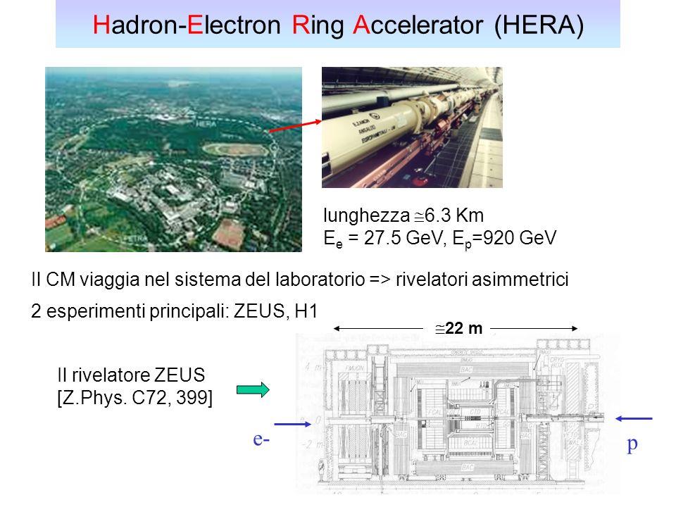 Hadron-Electron Ring Accelerator (HERA)