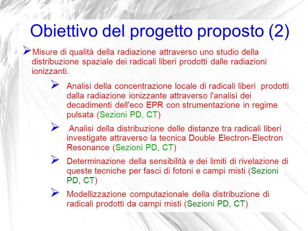 Obiettivo del progetto proposto (2)