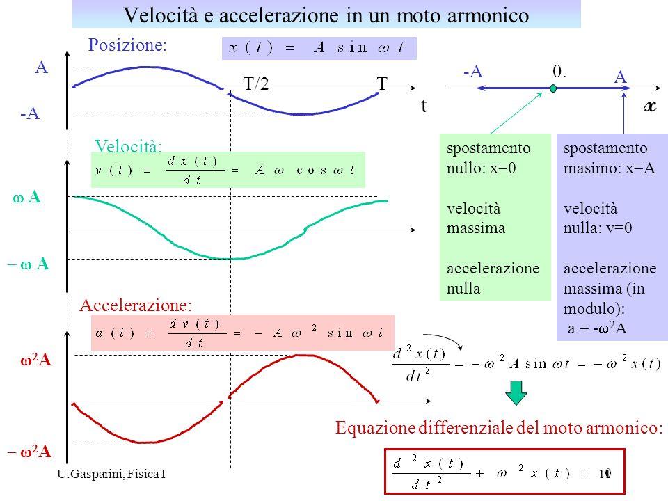 Velocità e accelerazione in un moto armonico