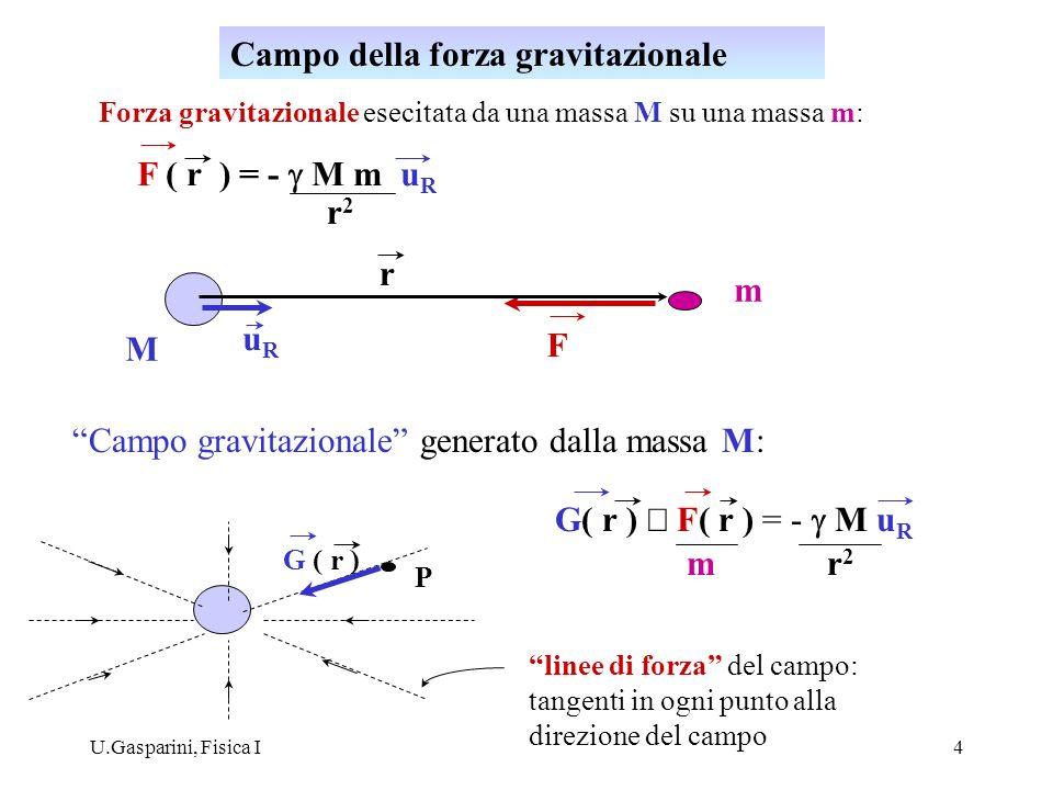 Campo della forza gravitazionale