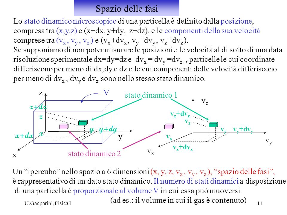 Spazio delle fasi Lo stato dinamico microscopico di una particella è definito dalla posizione,