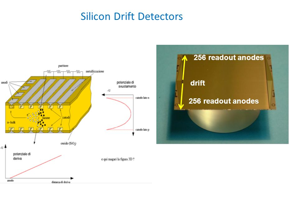 Silicon Drift Detectors