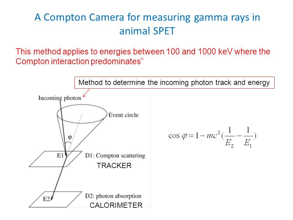 A Compton Camera for measuring gamma rays in animal SPET