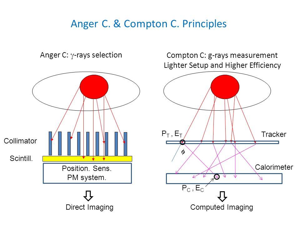 Anger C. & Compton C. Principles