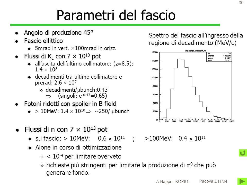 Parametri del fascio Flussi di n con 7 × 1013 pot
