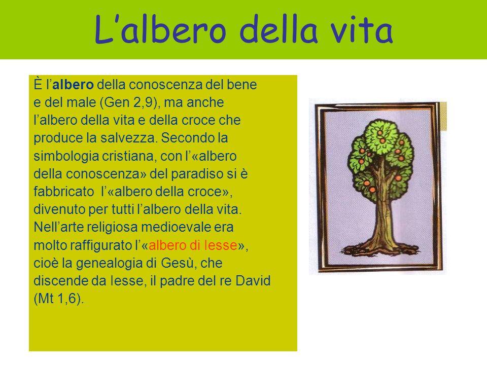 L'albero della vita È l'albero della conoscenza del bene