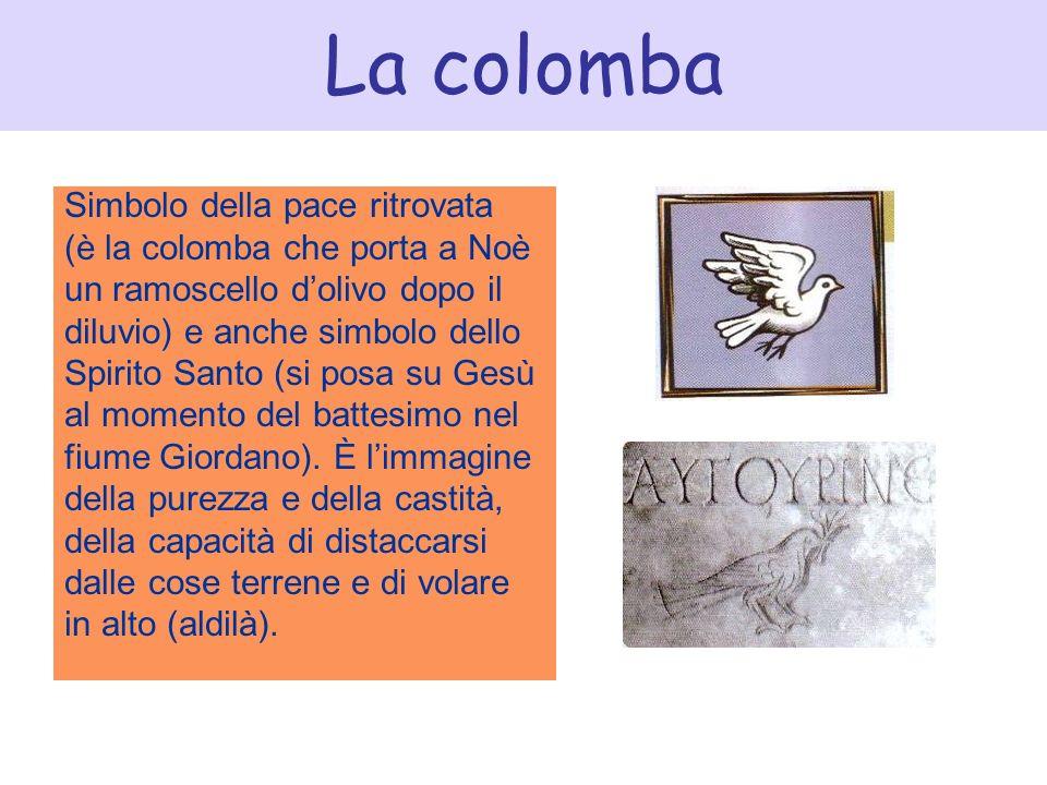La colomba Simbolo della pace ritrovata (è la colomba che porta a Noè