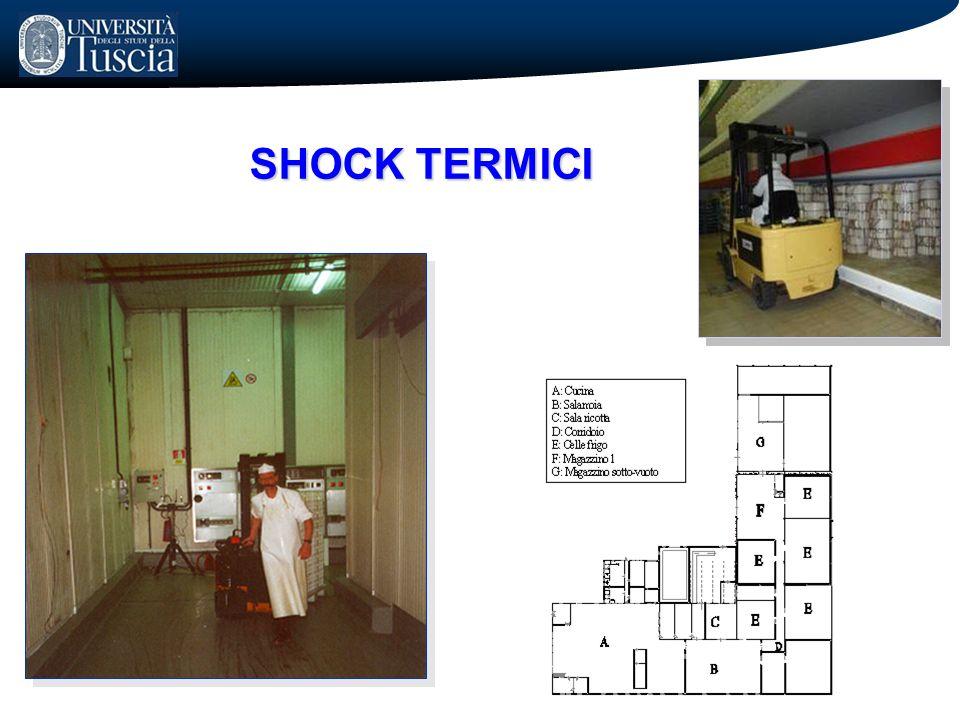 SHOCK TERMICI 14