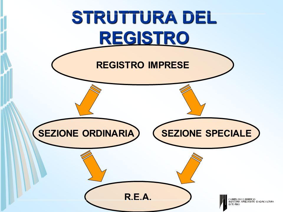 STRUTTURA DEL REGISTRO