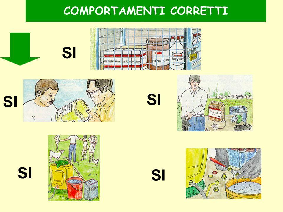 COMPORTAMENTI CORRETTI