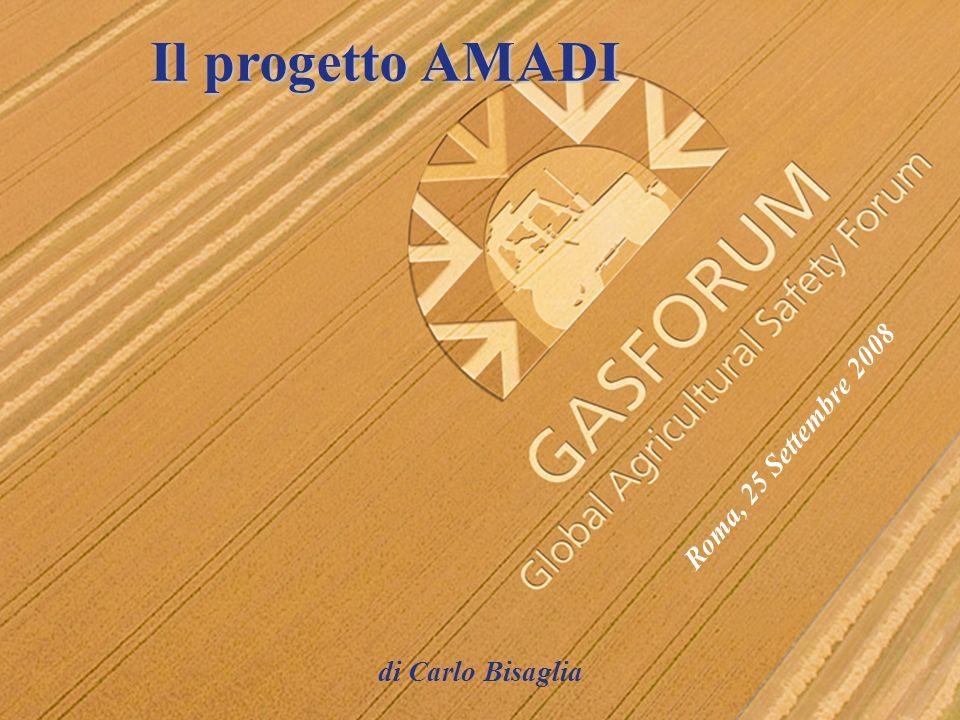 Il progetto AMADI Roma, 25 Settembre 2008 di Carlo Bisaglia