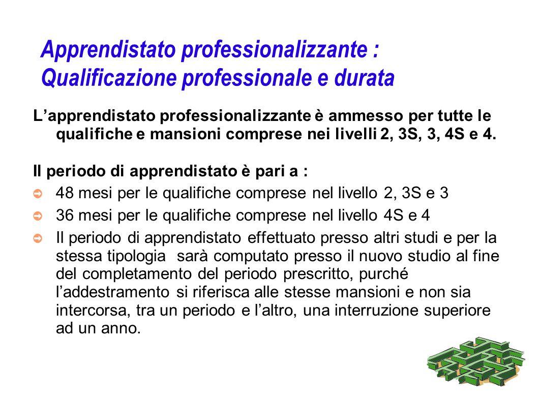 Apprendistato professionalizzante : Qualificazione professionale e durata