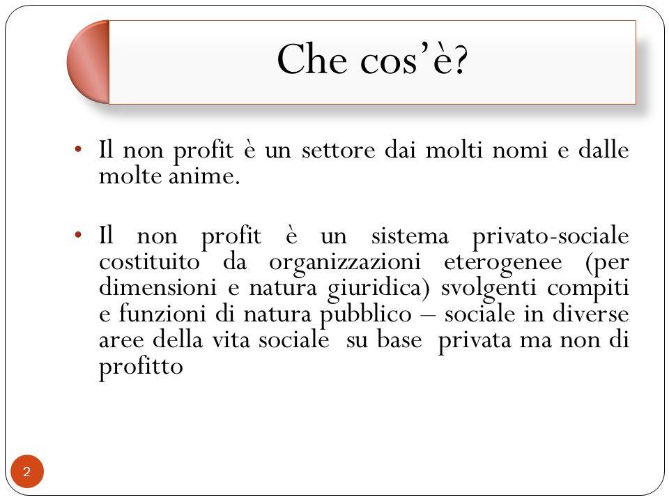 Il non profit è un settore dai molti nomi e dalle molte anime.