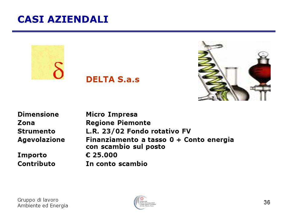 DELTA S.a.s CASI AZIENDALI Dimensione Micro Impresa
