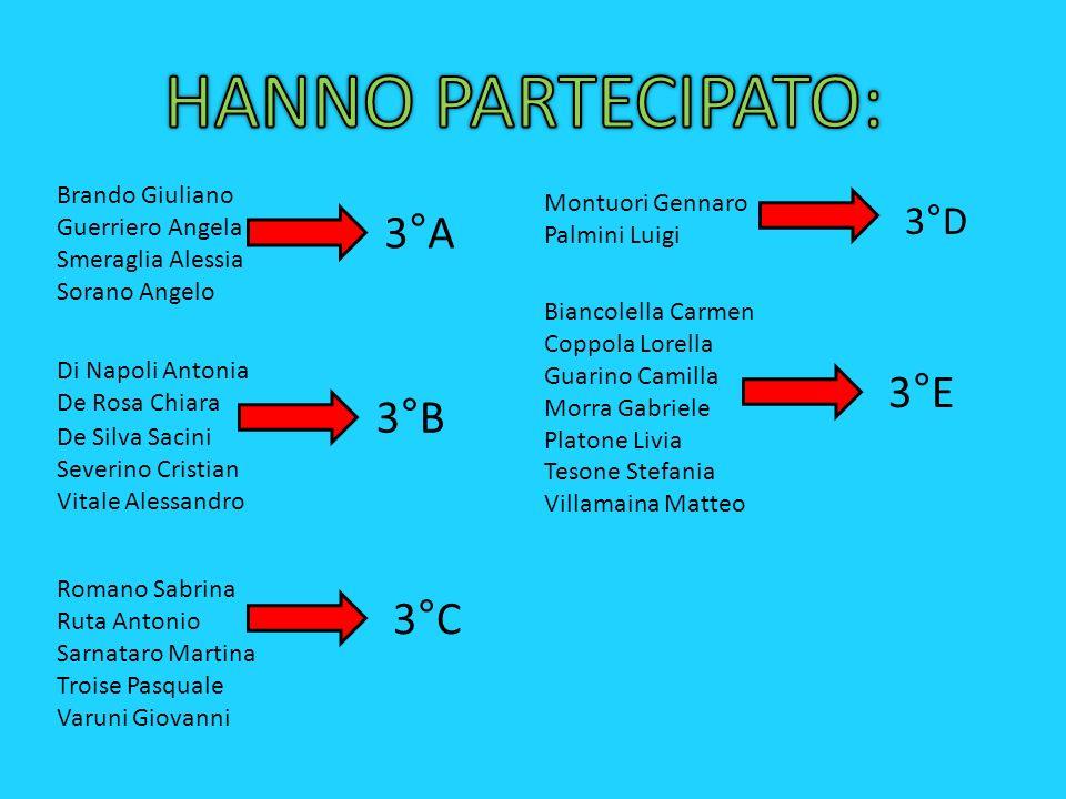 HANNO PARTECIPATO: 3°A 3°E 3°B 3°C 3°D Brando Giuliano