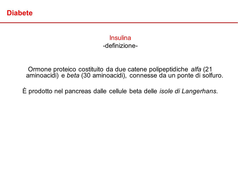 È prodotto nel pancreas dalle cellule beta delle isole di Langerhans.