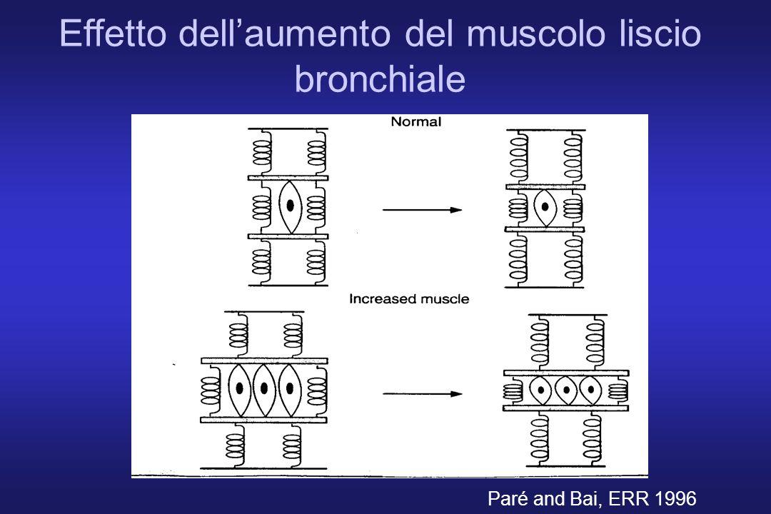 Effetto dell'aumento del muscolo liscio bronchiale