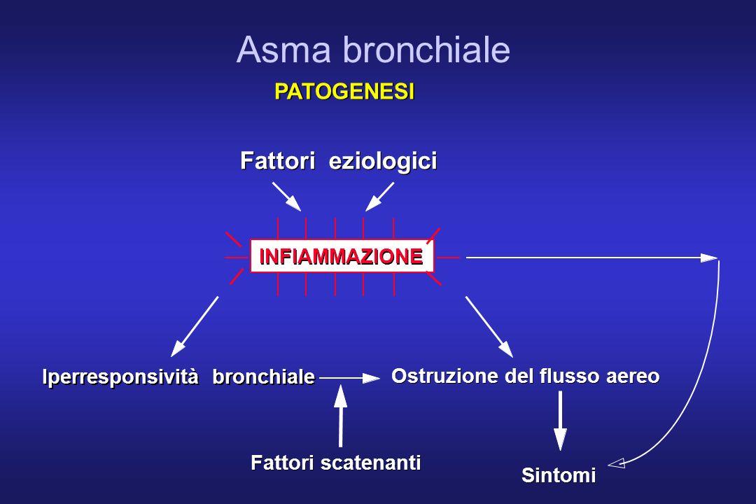 Asma bronchiale Fattori eziologici PATOGENESI INFIAMMAZIONE