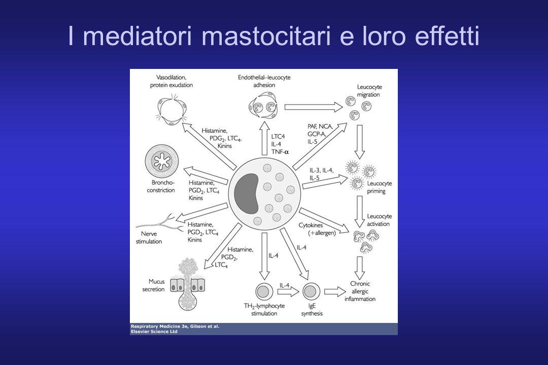 I mediatori mastocitari e loro effetti