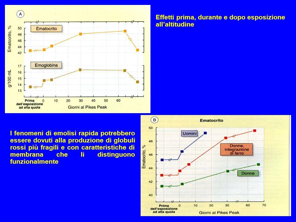 Effetti prima, durante e dopo esposizione all'altitudine