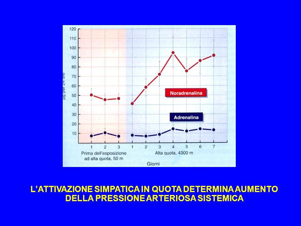 L'ATTIVAZIONE SIMPATICA IN QUOTA DETERMINA AUMENTO DELLA PRESSIONE ARTERIOSA SISTEMICA