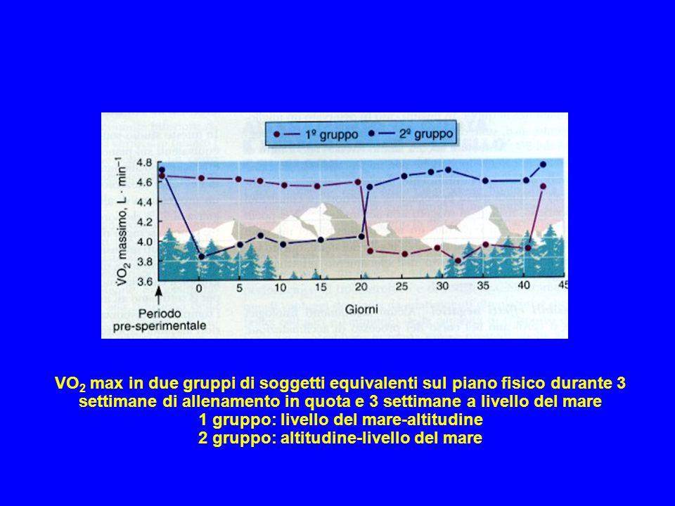 1 gruppo: livello del mare-altitudine