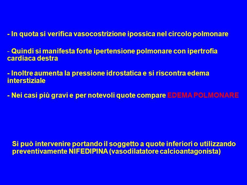 - In quota si verifica vasocostrizione ipossica nel circolo polmonare