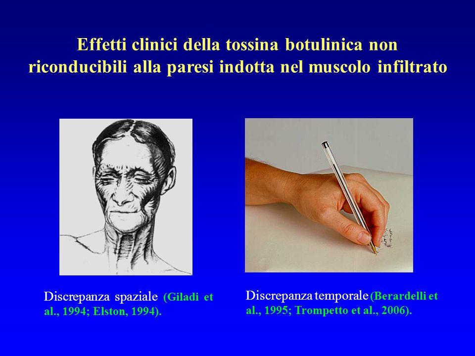 Effetti clinici della tossina botulinica non riconducibili alla paresi indotta nel muscolo infiltrato