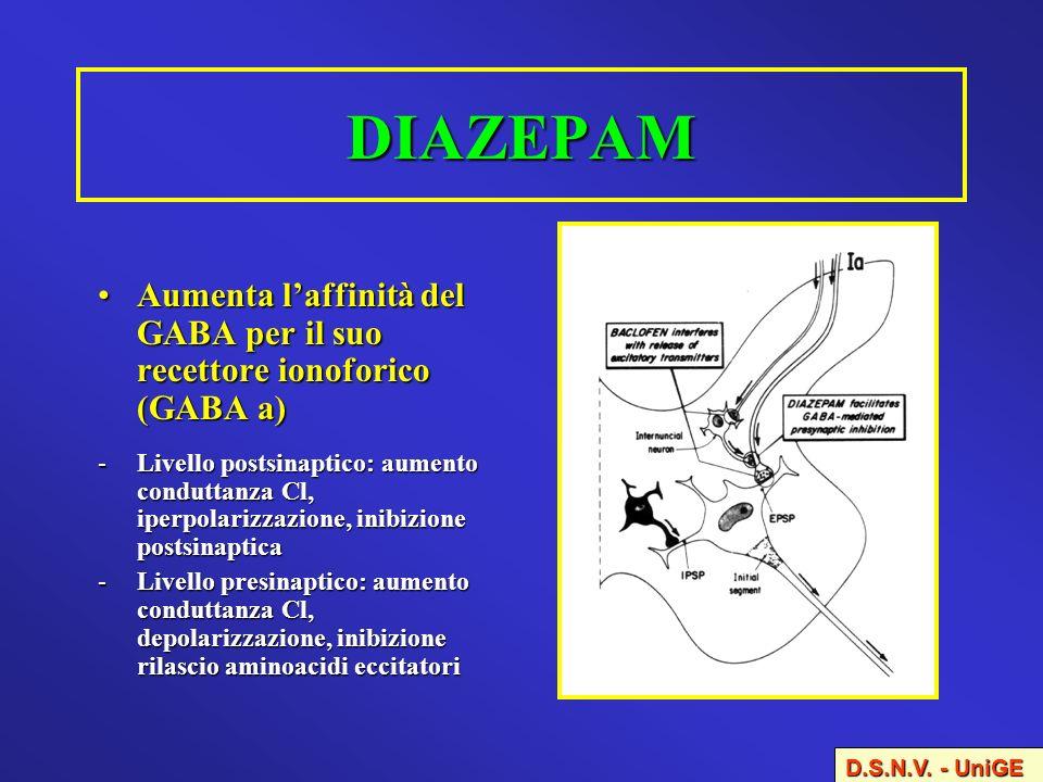 DIAZEPAM Aumenta l'affinità del GABA per il suo recettore ionoforico (GABA a)