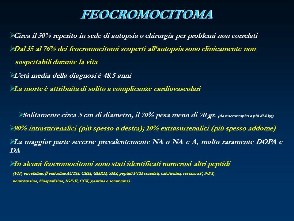 FEOCROMOCITOMA Circa il 30% reperito in sede di autopsia o chirurgia per problemi non correlati.