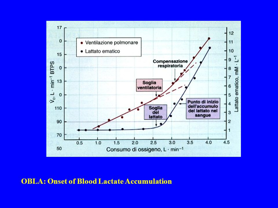 OBLA: Onset of Blood Lactate Accumulation