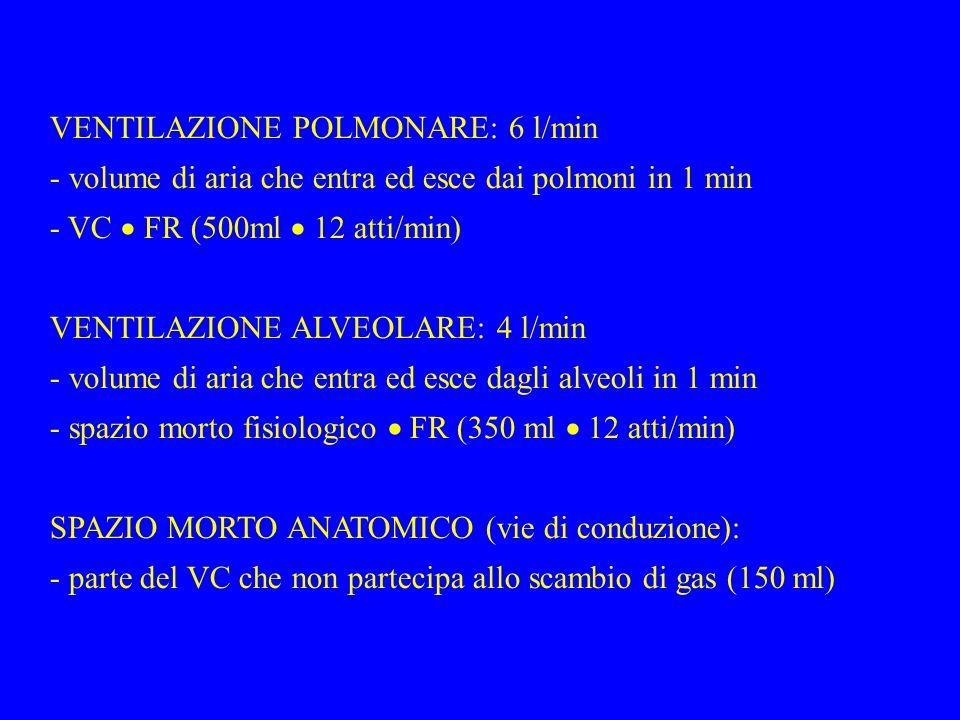 VENTILAZIONE POLMONARE: 6 l/min