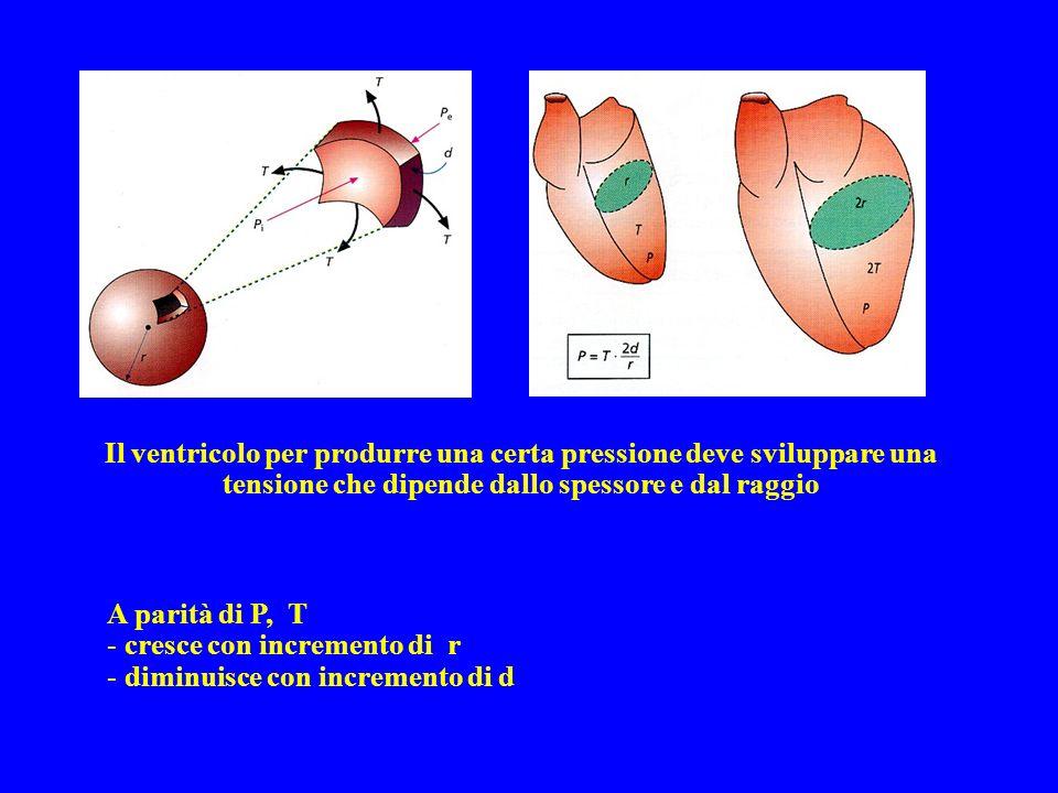 Il ventricolo per produrre una certa pressione deve sviluppare una tensione che dipende dallo spessore e dal raggio