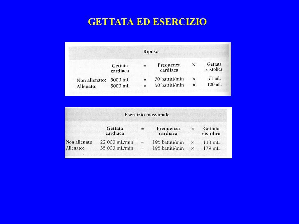 GETTATA ED ESERCIZIO
