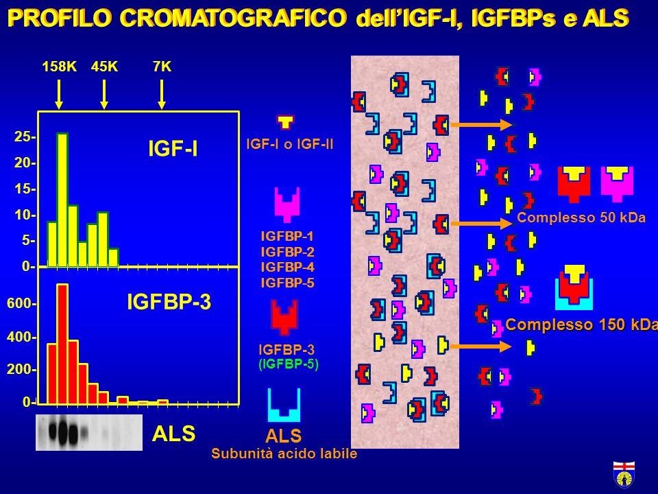 PROFILO CROMATOGRAFICO dell'IGF-I, IGFBPs e ALS
