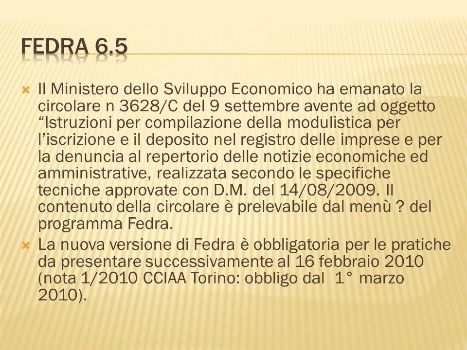 Fedra 6.5