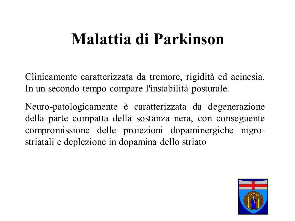 Malattia di Parkinson Clinicamente caratterizzata da tremore, rigidità ed acinesia. In un secondo tempo compare l instabilità posturale.