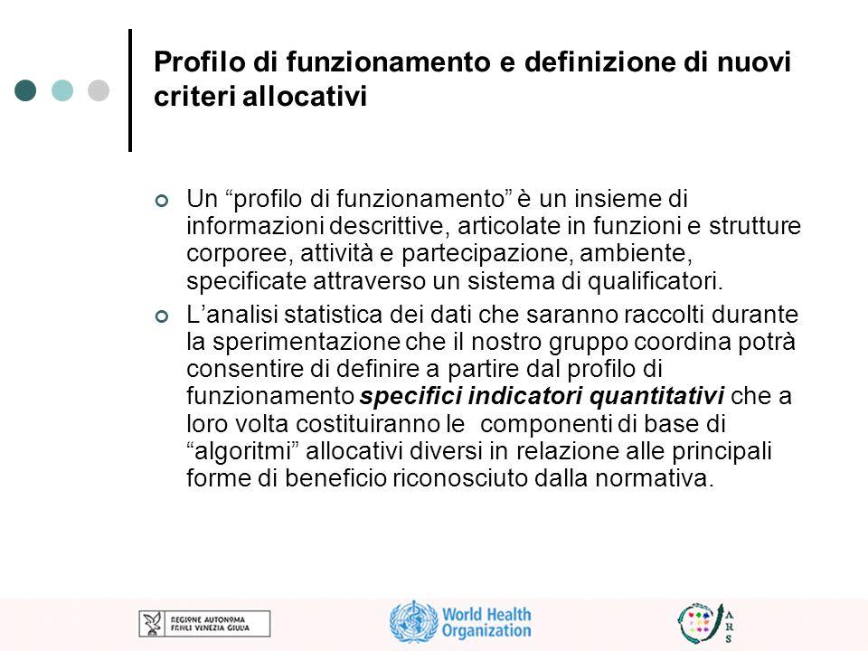Profilo di funzionamento e definizione di nuovi criteri allocativi