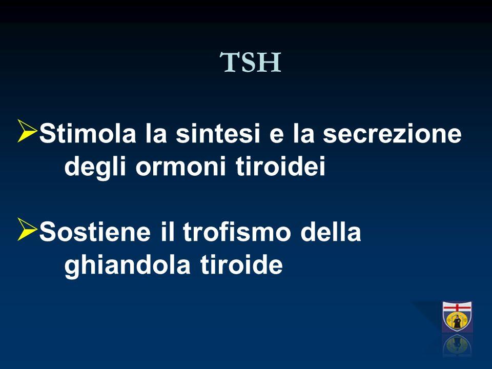 TSH Stimola la sintesi e la secrezione degli ormoni tiroidei