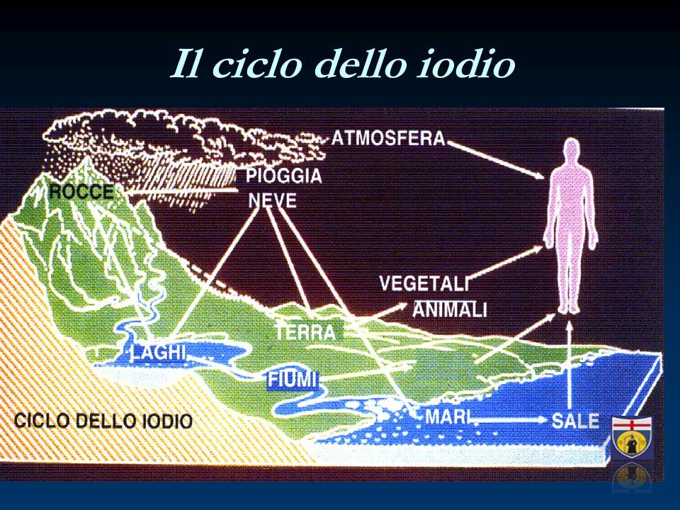 Il ciclo dello iodio