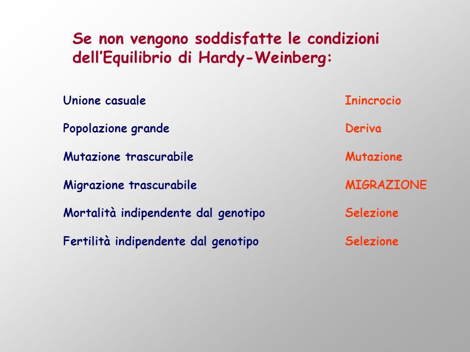Se non vengono soddisfatte le condizioni dell'Equilibrio di Hardy-Weinberg: