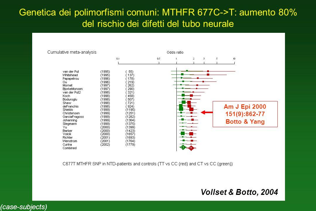 Genetica dei polimorfismi comuni: MTHFR 677C->T: aumento 80% del rischio dei difetti del tubo neurale