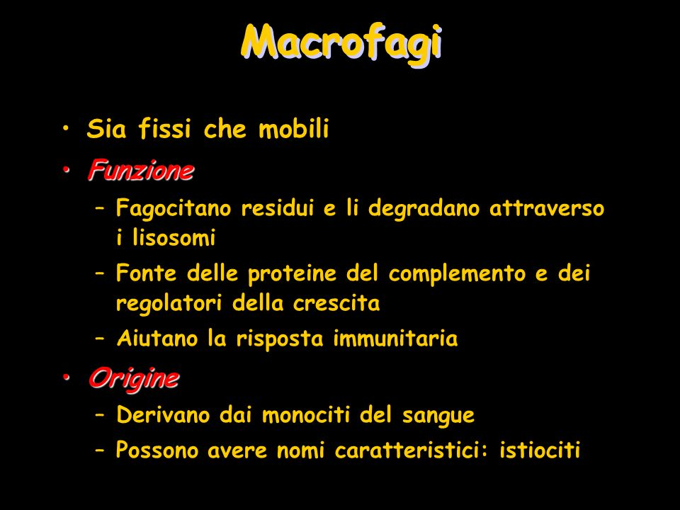 Macrofagi Sia fissi che mobili Funzione Origine
