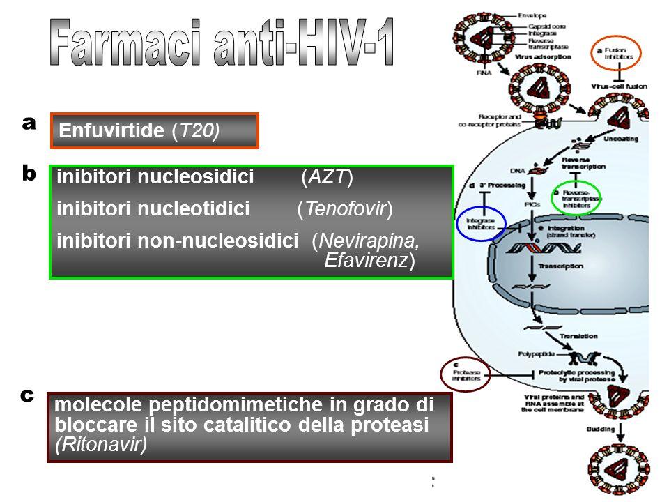 Farmaci anti-HIV-1 a b c Enfuvirtide (T20)