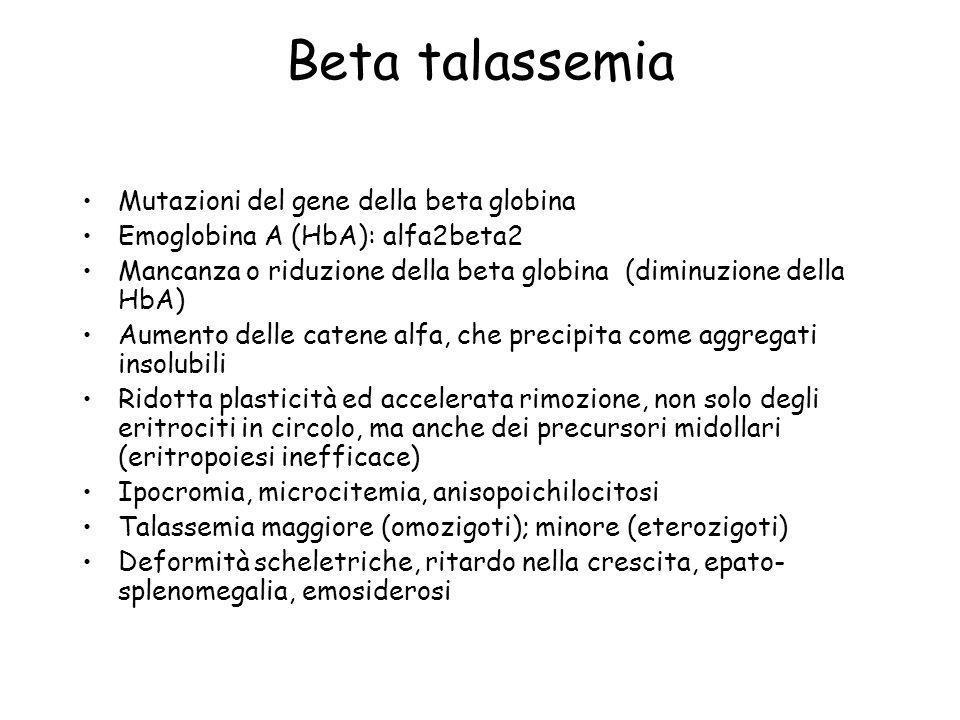 Beta talassemia Mutazioni del gene della beta globina